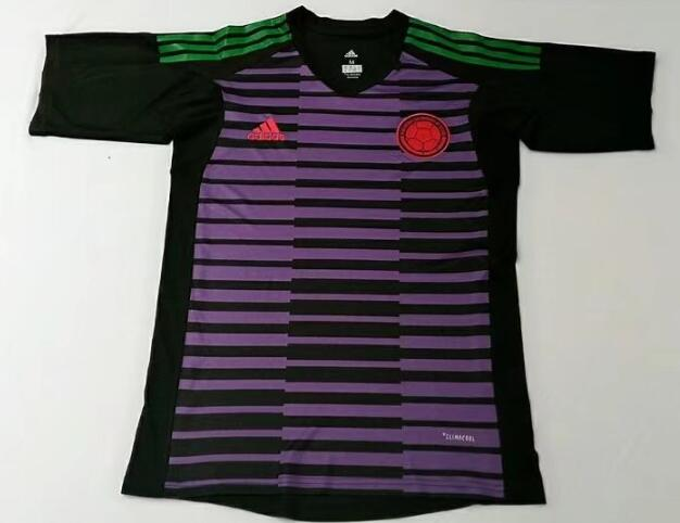Colombia Soccer Jerseys 2018 World Cup Goalkeeper Football Shirts